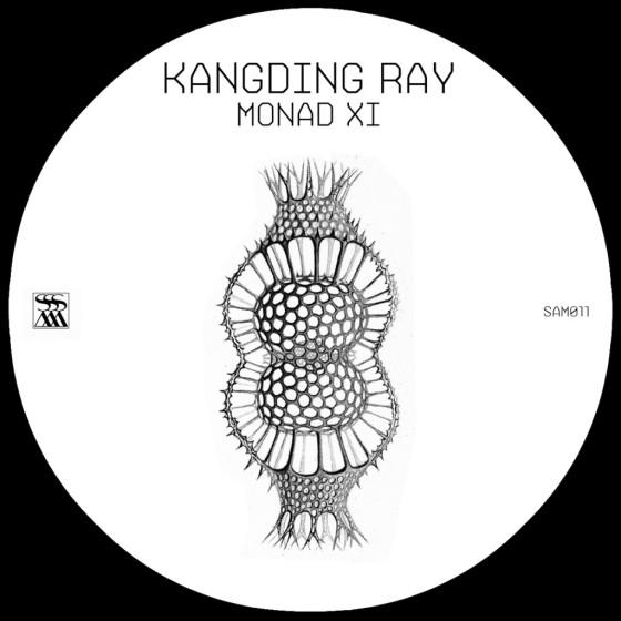 Monad XI [SAM011]